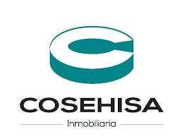 COSEHISA HOLDING